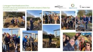 Photos souvenirs de la plantation le 22 novembre 2019 Axis Parc